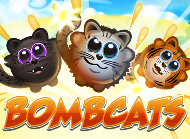 Bombcats reviews continue to roll in